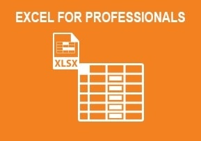 Excel For Professionals ...