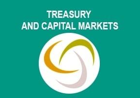 Treasury and Capital Ma ...