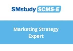 Marketing Strategy Expert