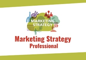 Marketing Strategy Professional