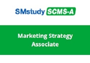 Marketing Strategy Associate