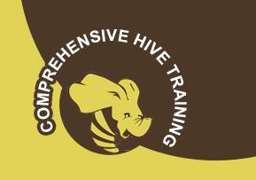 Spring data hadoop hive